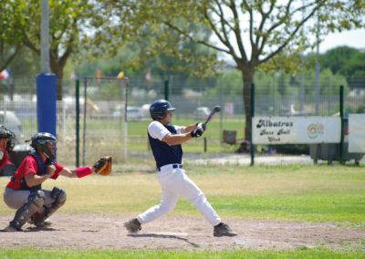 albatros-baseball-lagrandemotte-N2-2